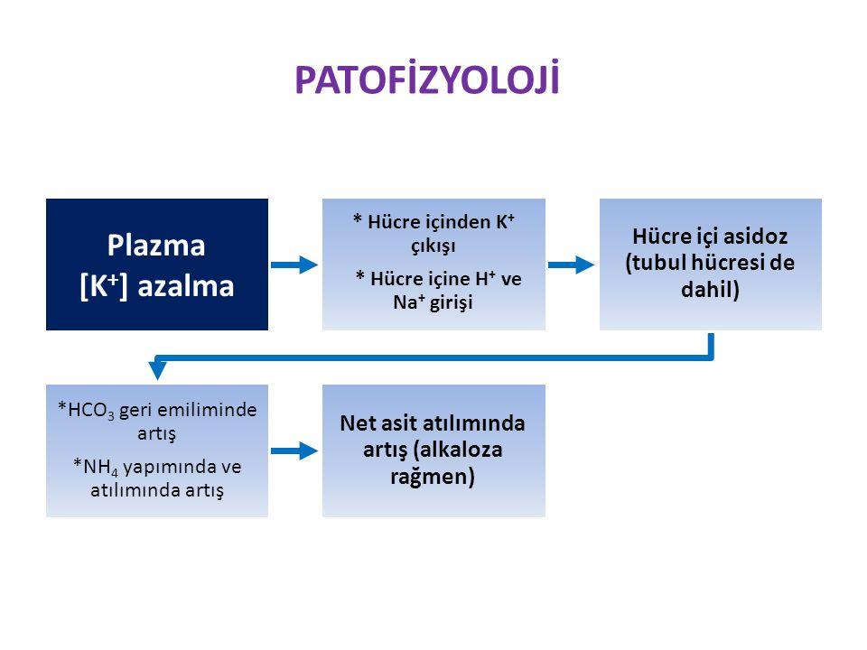 PATOFİZYOLOJİ Plazma [K+] azalma
